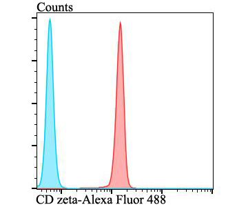 Flow cytometric analysis of Jurkat cells with CD3 zeta antibody at 1/100 dilution (red) compared with an unlabelled control (cells without incubation with primary antibody; blue). Alexa Fluor 488-conjugated goat anti-rabbit IgG was used as the secondary antibody.