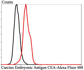 Flow cytometric analysis of Carcino Embryonic Antigen CEA was done on HepG2 cells. The cells were fixed, permeabilized and stained with Carcino Embryonic Antigen CEA antibody at 1/100 dilution (red) compared with an unlabelled control (cells without incubation with primary antibody; black). After incubation of the primary antibody on room temperature for an hour, the cells was stained with a Alexa Fluor™ 488-conjugated goat anti-rabbit IgG Secondary antibody at 1/500 dilution for 30 minutes.