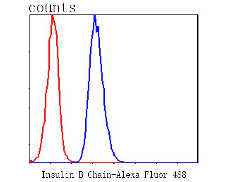 Flow cytometric analysis of Insulin B Chain was done on HepG2 cells. The cells were fixed, permeabilized and stained with the primary antibody (0807-11, 1/50) (blue). After incubation of the primary antibody at room temperature for an hour, the cells were stained with a Alexa Fluor 488-conjugated Goat anti-Rabbit IgG Secondary antibody at 1/1000 dilution for 30 minutes.Unlabelled sample was used as a control (cells without incubation with primary antibody; red).