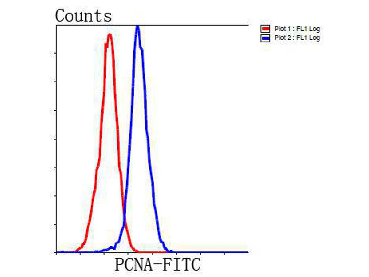 Flow cytometric analysis of Hela cells with PCNA antibody at 1/100 dilution (blue) compared with an unlabelled control (cells without incubation with primary antibody; red). Goat anti mouse IgG (FITC) was used as the secondary antibody.