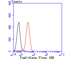 Flow cytometric analysis of Daudi cells with Tim3 antibody at 1/100 dilution (red) compared with an unlabelled control (cells without incubation with primary antibody; black).