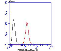 Flow cytometric analysis of Hela cells with PCSK9 antibody at 1/100 dilution (red) compared with an unlabelled control (cells without incubation with primary antibody; black). Alexa Fluor 488-conjugated Goat anti mouse IgG was used as the secondary antibody.