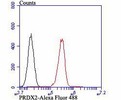 Flow cytometric analysis of PC-3M cells with Peroxiredoxin 2 antibody at 1/100 dilution (red) compared with an unlabelled control (cells without incubation with primary antibody; black). Alexa Fluor 488-conjugated goat anti-mouse IgG1 was used as the secondary antibody.