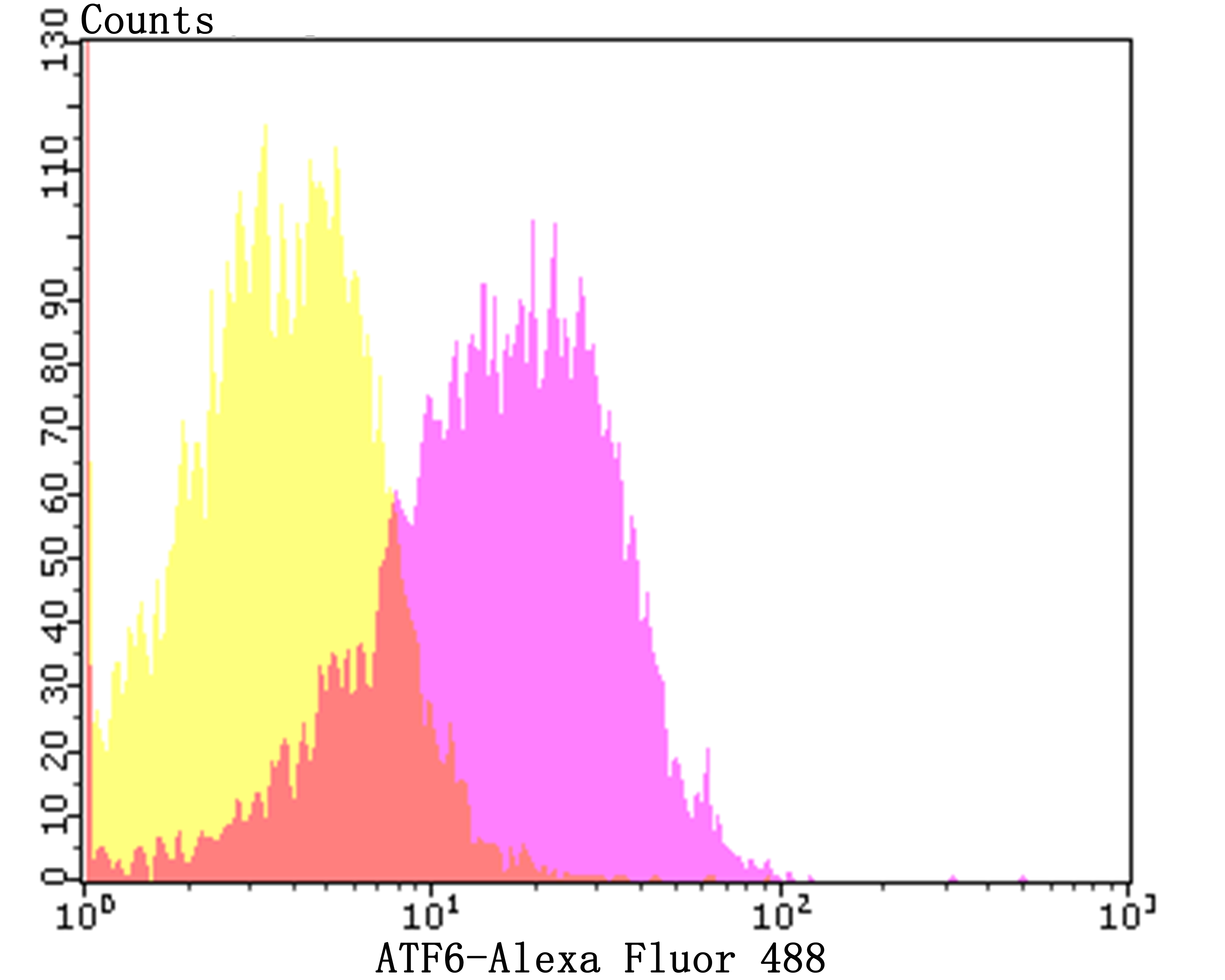 Flow cytometric analysis of HepG2 cells with ATF6 antibody at 1/50 dilution (pink purple) compared with an unlabelled control (cells without incubation with primary antibody; yellow). Alexa Fluor 488-conjugated goat anti-rabbit IgG was used as the secondary antibody.