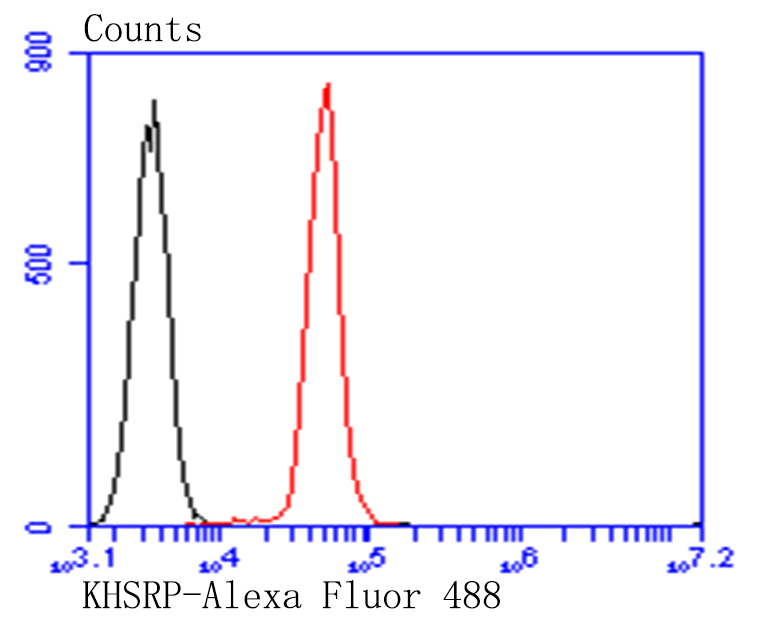Flow cytometric analysis of HT-29 cells with KHSRP antibody at 1/100 dilution (red) compared with an unlabelled control (cells without incubation with primary antibody; black). Alexa Fluor 488-conjugated goat anti-mouse IgG was used as the secondary antibody.