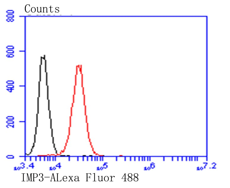 Flow cytometric analysis of PANC-1 cells with IMP3 antibody at 1/100 dilution (red) compared with an unlabelled control (cells without incubation with primary antibody; black). Alexa Fluor 488-conjugated goat anti-mouse IgG was used as the secondary antibody.