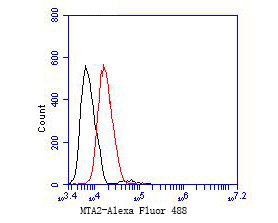 Flow cytometric analysis of MTA2 was done on MCF-7 cells. The cells were fixed, permeabilized and stained with the primary antibody (EM1901-34, 1/50) (red). After incubation of the primary antibody at room temperature for an hour, the cells were stained with a Alexa Fluor 488-conjugated Goat anti-Mouse IgG Secondary antibody at 1/1000 dilution for 30 minutes.Unlabelled sample was used as a control (cells without incubation with primary antibody; black).