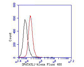 Flow cytometric analysis of SPATIAL was done on JAR cells. The cells were fixed, permeabilized and stained with the primary antibody (EM1901-35, 1/50) (red). After incubation of the primary antibody at room temperature for an hour, the cells were stained with a Alexa Fluor 488-conjugated Goat anti-Mouse IgG Secondary antibody at 1/1000 dilution for 30 minutes.Unlabelled sample was used as a control (cells without incubation with primary antibody; black).