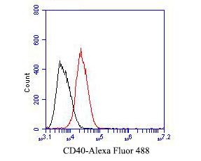 Flow cytometric analysis of CD40 was done on Daudi cells. The cells were fixed, permeabilized and stained with the primary antibody (EM1901-41, 1/50) (red). After incubation of the primary antibody at room temperature for an hour, the cells were stained with a Alexa Fluor 488-conjugated Goat anti-Mouse IgG Secondary antibody at 1/1000 dilution for 30 minutes.Unlabelled sample was used as a control (cells without incubation with primary antibody; black).