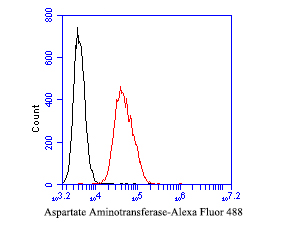 Flow cytometric analysis of Aspartate Aminotransferase was done on SW620 cells. The cells were fixed, permeabilized and stained with the primary antibody (EM1901-50, 1/50) (red). After incubation of the primary antibody at room temperature for an hour, the cells were stained with a Alexa Fluor 488-conjugated Goat anti-Mouse IgG Secondary antibody at 1/1000 dilution for 30 minutes.Unlabelled sample was used as a control (cells without incubation with primary antibody; black).