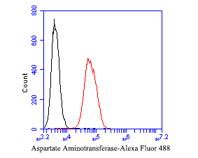 Flow cytometric analysis of Aspartate Aminotransferase was done on SW620 cells. The cells were fixed, permeabilized and stained with the primary antibody (EM1901-51, 1/50) (red). After incubation of the primary antibody at room temperature for an hour, the cells were stained with a Alexa Fluor 488-conjugated Goat anti-Mouse IgG Secondary antibody at 1/1000 dilution for 30 minutes.Unlabelled sample was used as a control (cells without incubation with primary antibody; black).
