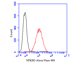 Flow cytometric analysis of NFKB2 was done on A431 cells. The cells were fixed, permeabilized and stained with the primary antibody (EM1901-78, 1/50) (red). After incubation of the primary antibody at room temperature for an hour, the cells were stained with a Alexa FluorTM488 Goat anti-Mouse IgG antibody at 1/1000 dilution for 30 minutes.Unlabelled sample was used as a control (cells without incubation with primary antibody; black).