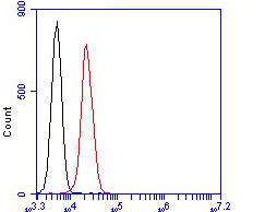 Flow cytometric analysis of Albumin was done on HepG2 cells. The cells were fixed, permeabilized and stained with the primary antibody (EM1901-81, 1/100) (red). After incubation of the primary antibody at room temperature for an hour, the cells were stained with Alexa FluorTM488 Goat anti-Mouse IgG Secondary antibody at 1/500 dilution for 30 minutes.Unlabelled sample was used as a control (cells without incubation with primary antibody; blcak).