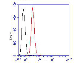 Flow cytometric analysis of ACY1 was done on SHSY5Y cells. The cells were fixed, permeabilized and stained with the primary antibody (EM1901-86, 1/100) (red). After incubation of the primary antibody at room temperature for an hour, the cells were stained with a Alexa FluorTM488 Goat anti-Mouse IgG IgG Secondary antibody at 1/500 dilution for 30 minutes.Unlabelled sample was used as a control (cells without incubation with primary antibody; blcak).