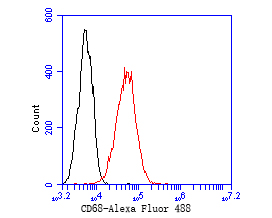 Flow cytometric analysis of CD68 was done on THP-1 cells. The cells were fixed, permeabilized and stained with the primary antibody (EM1901-95, 1/50) (red). After incubation of the primary antibody at room temperature for an hour, the cells were stained with a Alexa Fluor 488-conjugated Goat anti-Mouse IgG Secondary antibody at 1/1000 dilution for 30 minutes.Unlabelled sample was used as a control (cells without incubation with primary antibody; black).