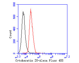 Flow cytometric analysis of Cytokeratin 20 was done on JAR cells. The cells were fixed, permeabilized and stained with the primary antibody (EM1901-96, 1/50) (red). After incubation of the primary antibody at room temperature for an hour, the cells were stained with a Alexa Fluor 488-conjugated Goat anti-Mouse IgG Secondary antibody at 1/1000 dilution for 30 minutes.Unlabelled sample was used as a control (cells without incubation with primary antibody; black).