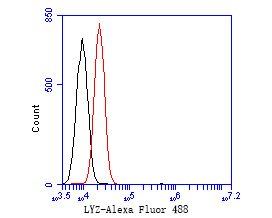 Flow cytometric analysis of Lysozyme was done on A549 cells. The cells were fixed, permeabilized and stained with the primary antibody (EM1901-98, 1/50) (red). After incubation of the primary antibody at room temperature for an hour, the cells were stained with a Alexa Fluor 488-conjugated Goat anti-Mouse IgG Secondary antibody at 1/1000 dilution for 30 minutes.Unlabelled sample was used as a control (cells without incubation with primary antibody; black).