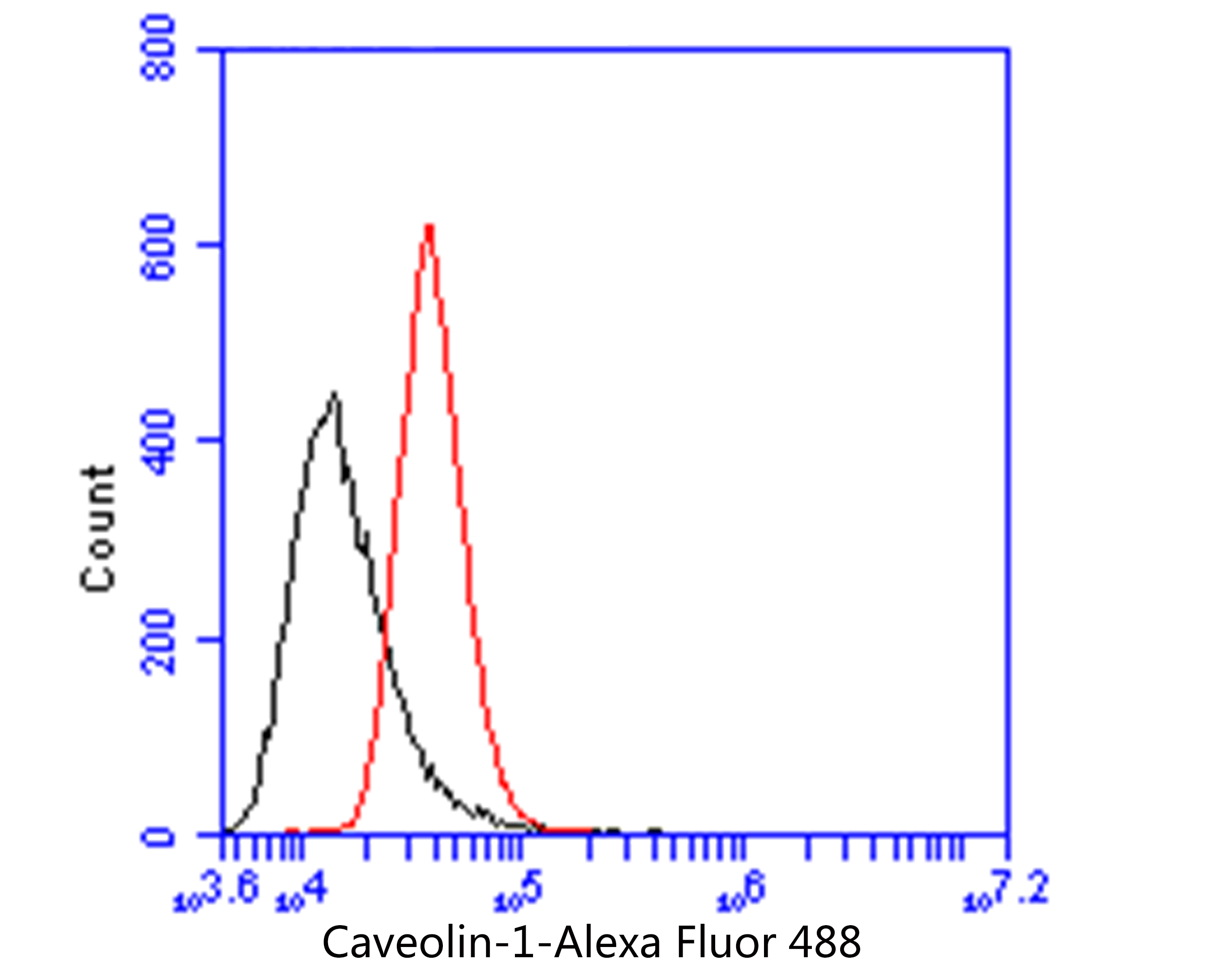 Flow cytometric analysis of Caveolin-1 was done on PANC-1 cells. The cells were fixed, permeabilized and stained with the primary antibody (EM1902-01, 1/50) (red). After incubation of the primary antibody at room temperature for an hour, the cells were stained with a Alexa Fluor 488-conjugated Goat anti-Mouse IgG Secondary antibody at 1/1000 dilution for 30 minutes.Unlabelled sample was used as a control (cells without incubation with primary antibody; black).