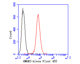 Flow cytometric analysis of HMGB2 was done on SW620 cells. The cells were fixed, permeabilized and stained with the primary antibody (EM1902-06, 1/50) (red). After incubation of the primary antibody at room temperature for an hour, the cells were stained with a Alexa Fluor 488-conjugated Goat anti-Mouse IgG Secondary antibody at 1/1000 dilution for 30 minutes.Unlabelled sample was used as a control (cells without incubation with primary antibody; black).