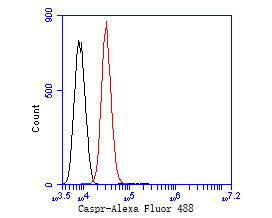 Flow cytometric analysis of Caspr was done on SH-SY5Y cells. The cells were fixed, permeabilized and stained with the primary antibody (EM1902-10, 1/50) (red). After incubation of the primary antibody at room temperature for an hour, the cells were stained with a Alexa Fluor 488-conjugated Goat anti-Mouse IgG Secondary antibody at 1/1000 dilution for 30 minutes.Unlabelled sample was used as a control (cells without incubation with primary antibody; black).