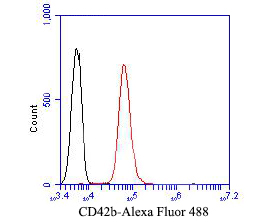 Flow cytometric analysis of CD42b was done on Jurkat cells. The cells were fixed, permeabilized and stained with the primary antibody (EM1902-15, 1/50) (red). After incubation of the primary antibody at room temperature for an hour, the cells were stained with a Alexa Fluor 488-conjugated Goat anti-Mouse IgG Secondary antibody at 1/1000 dilution for 30 minutes.Unlabelled sample was used as a control (cells without incubation with primary antibody; black).
