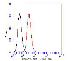 Flow cytometric analysis of PAX8 was done on 293 cells. The cells were fixed, permeabilized and stained with the primary antibody (EM1902-22, 1/50) (red). After incubation of the primary antibody at room temperature for an hour, the cells were stained with a Alexa Fluor 488-conjugated Goat anti-Mouse IgG Secondary antibody at 1/1000 dilution for 30 minutes.Unlabelled sample was used as a control (cells without incubation with primary antibody; black).