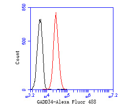 Flow cytometric analysis of GADD34 was done on K562 cells. The cells were fixed, permeabilized and stained with the primary antibody (EM1902-26, 1/50) (red). After incubation of the primary antibody at room temperature for an hour, the cells were stained with a Alexa Fluor 488-conjugated Goat anti-Mouse IgG Secondary antibody at 1/1000 dilution for 30 minutes.Unlabelled sample was used as a control (cells without incubation with primary antibody; black).