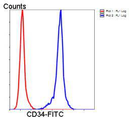 Flow cytometric analysis of Jurkat cells with CD34 antibody at 1/50 dilution (blue) compared with an unlabelled control (cells without incubation with primary antibody; red). Goat anti rabbit IgG (FITC) was used as the secondary antibody.