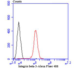 Flow cytometric analysis of A431 cells with Integrin beta-3 antibody at 1/100 dilution (red) compared with an unlabelled control (cells without incubation with primary antibody; black). Alexa Fluor 488-conjugated Goat anti rabbit IgG was used as the secondary antibody.