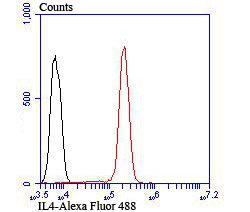 Flow cytometric analysis of Jurkat cells with IL4 antibody at 1/100 dilution (red) compared with an unlabelled control (cells without incubation with primary antibody; black). Alexa Fluor 488-conjugated goat anti rabbit IgG was used as the secondary antibody.