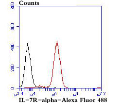 Flow cytometric analysis of Daudi cells with IL-7R-alpha antibody at 1/100 dilution (red) compared with an unlabelled control (cells without incubation with primary antibody; black).