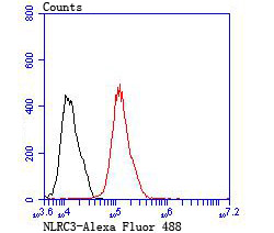 Flow cytometric analysis of MCF-7 cells with NLRC3 antibody at 1/100 dilution (red) compared with an unlabelled control (cells without incubation with primary antibody; black).