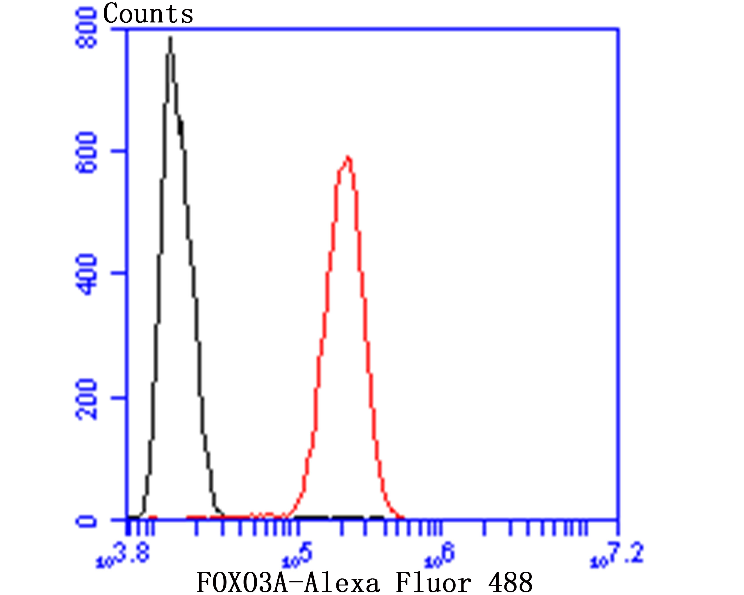 Flow cytometric analysis of SHSY5Y cells with FOXO3A antibody at 1/50 dilution (red) compared with an unlabelled control (cells without incubation with primary antibody; black). Alexa Fluor 488-conjugated Goat anti rabbit IgG was used as the secondary antibody.