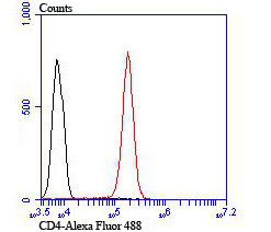 Flow cytometric analysis of Jurkat cells with CD4 antibody at 1/100 dilution (red) compared with an unlabelled control (cells without incubation with primary antibody; black). Alexa Fluor 488-conjugated Goat anti rabbit IgG was used as the secondary antibody.