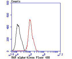 Flow cytometric analysis of MCF-7 cells with RAR alpha antibody at 1/100 dilution (red) compared with an unlabelled control (cells without incubation with primary antibody; black). Alexa Fluor 488-conjugated Goat anti rabbit IgG was used as the secondary antibody.