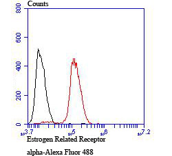Flow cytometric analysis of MCF-7 cells with Estrogen Related Receptor alpha antibody at 1/100 dilution (red) compared with an unlabelled control (cells without incubation with primary antibody; black). Alexa Fluor 488-conjugated goat anti rabbit IgG was used as the secondary antibody.