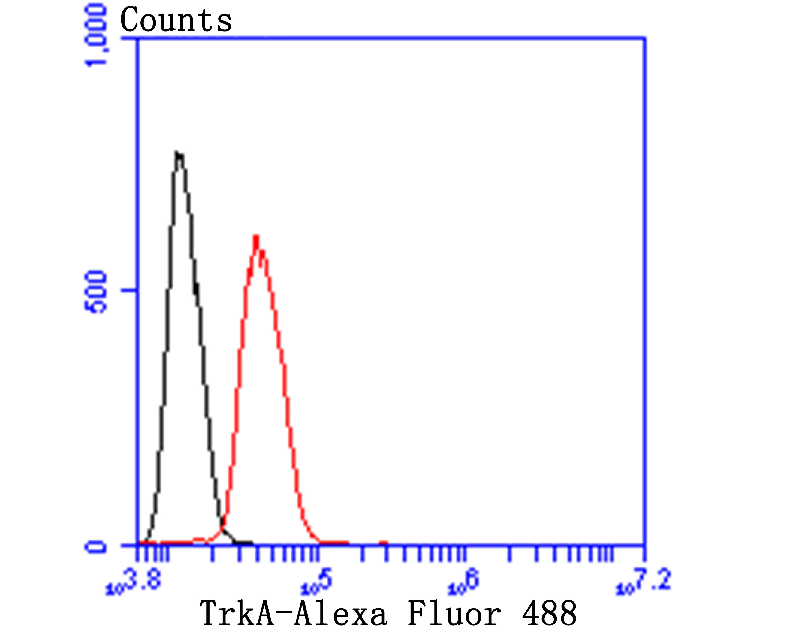 Flow cytometric analysis of SHSY5Y cells with TrkA 1/2 antibody at 1/100 dilution (blue) compared with an unlabelled control (cells without incubation with primary antibody; red). Goat anti rabbit IgG (FITC) was used as the secondary antibody.
