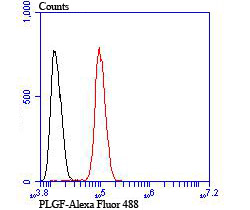 Flow cytometric analysis of SH-SY5Y cells with PLGF antibody at 1/100 dilution (red) compared with an unlabelled control (cells without incubation with primary antibody; black). Alexa Fluor 488-conjugated goat anti rabbit IgG was used as the secondary antibody.