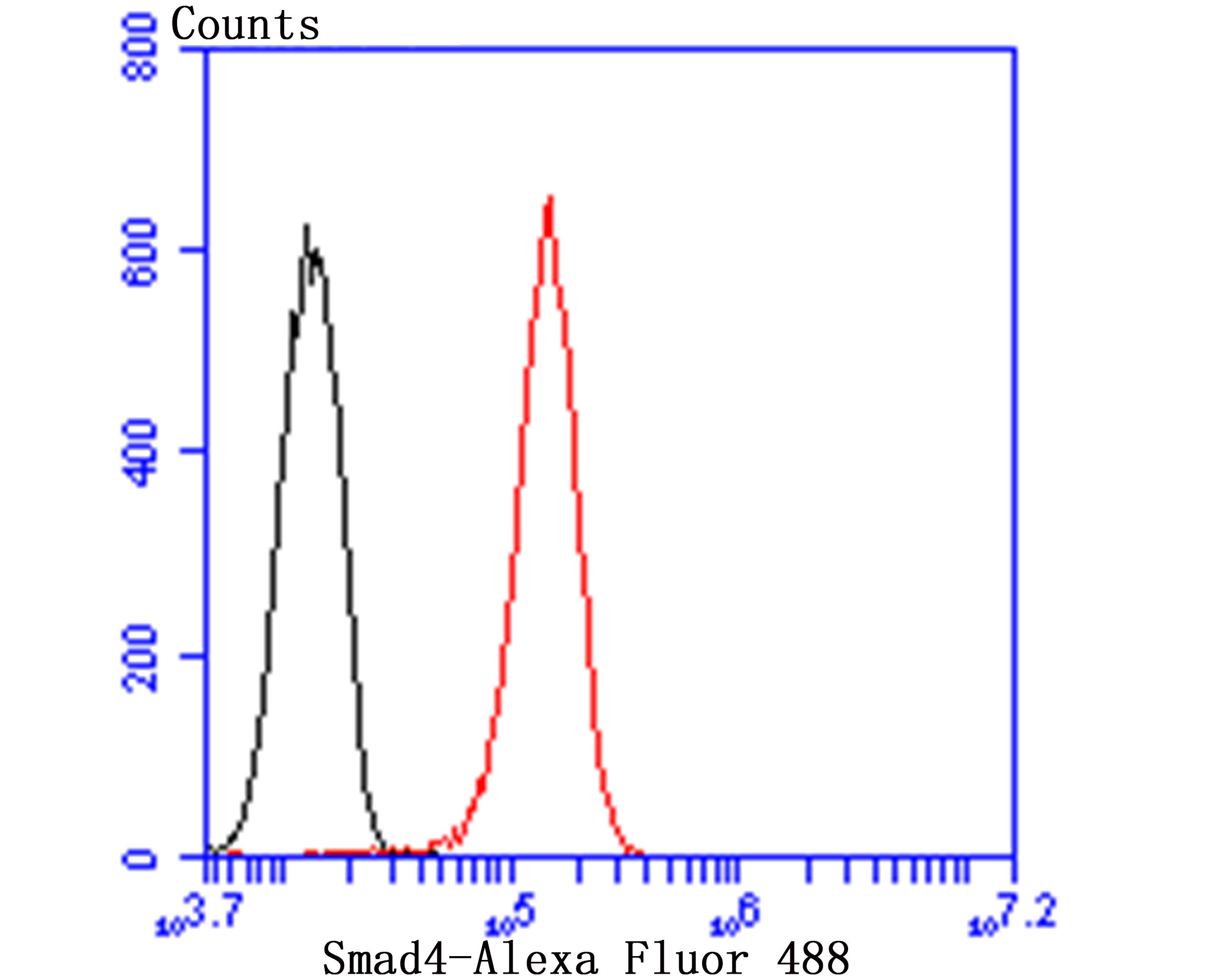 Flow cytometric analysis of HUVEC cells with Smad4 antibody at 1/50 dilution (red) compared with an unlabelled control (cells without incubation with primary antibody; black). Alexa Fluor 488-conjugated goat anti rabbit IgG was used as the secondary antibody.