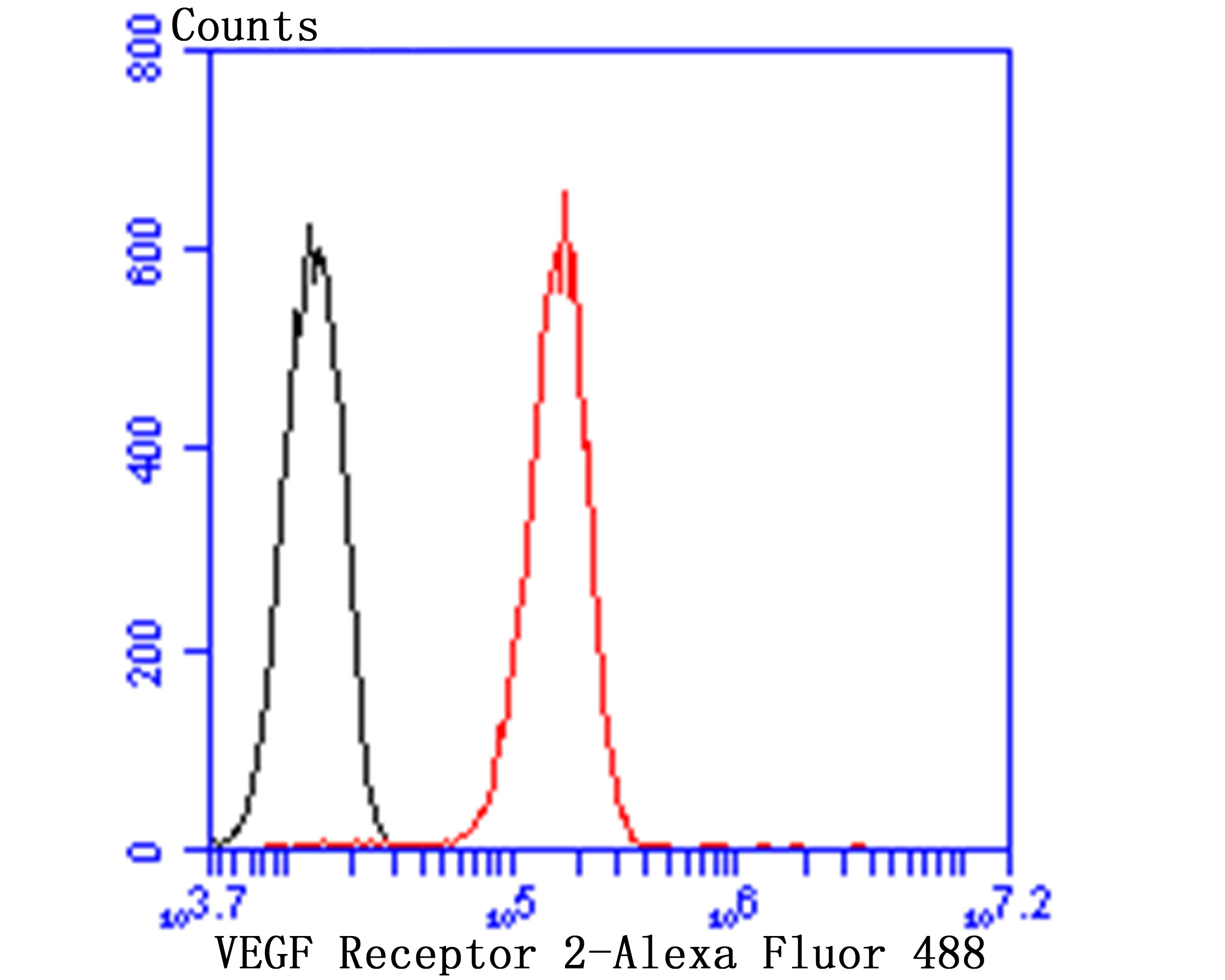Flow cytometric analysis of VEGF Receptor 2 was done on HUVEC cells. The cells were fixed, permeabilized and stained with the primary antibody (ER1706-99, 1/50) (red). After incubation of the primary antibody at room temperature for an hour, the cells were stained with a Alexa Fluor®488 conjugate-Goat anti-Rabbit IgG Secondary antibody at 1/1000 dilution for 30 minutes.Unlabelled sample was used as a control (cells without incubation with primary antibody; black).