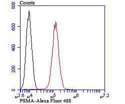 Flow cytometric analysis of HepG2 cells with PSMA antibody at 1/100 dilution (red) compared with an unlabelled control (cells without incubation with primary antibody; black).