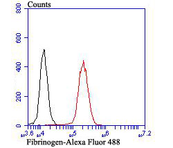 Flow cytometric analysis of NIH-3T3 cells with Fibrinogen antibody at 1/100 dilution (red) compared with an unlabelled control (cells without incubation with primary antibody; black). Alexa Fluor 488-conjugated goat anti-rabbit IgG was used as the secondary antibody.