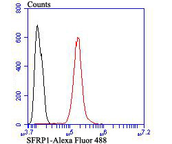 Flow cytometric analysis of SH-SY-5Y cells with SFRP1 antibody at 1/100 dilution (red) compared with an unlabelled control (cells without incubation with primary antibody; black). Alexa Fluor 488-conjugated goat anti-rabbit IgG was used as the secondary antibody.