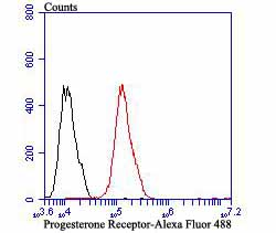Flow cytometric analysis of MCF-7 cells with Progesterone Receptor antibody at 1/100 dilution (red) compared with an unlabelled control (cells without incubation with primary antibody; black). Alexa Fluor 488-conjugated goat anti-rabbit IgG was used as the secondary antibody.
