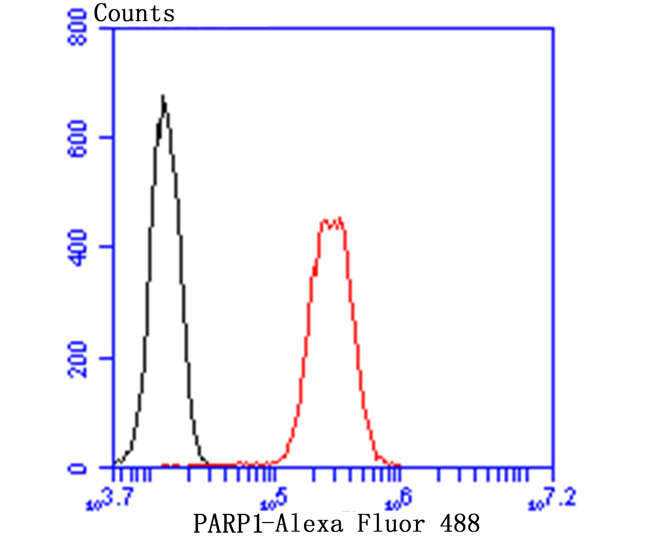 Flow cytometric analysis of K562 cells with PARP1 antibody at 1/50 dilution (red) compared with an unlabelled control (cells without incubation with primary antibody; black). Alexa Fluor 488-conjugated goat anti rabbit IgG was used as the secondary antibody.