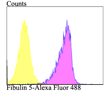 Flow cytometric analysis of SiHa cells with Fibulin 5 antibody at 1/100 dilution (purple) compared with an unlabelled control (cells without incubation with primary antibody; yellow). Alexa Fluor 488-conjugated goat anti-rabbit IgG was used as the secondary antibody.