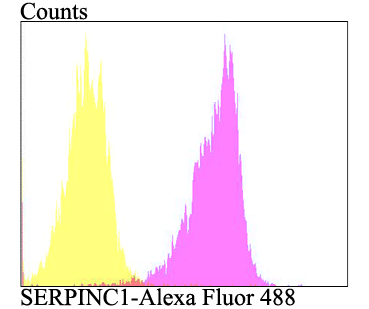 Flow cytometric analysis of HepG2 cells with SERPINC1 antibody at 1/100 dilution (purple) compared with an unlabelled control (cells without incubation with primary antibody; yellow). Alexa Fluor 488-conjugated goat anti-rabbit IgG was used as the secondary antibody.
