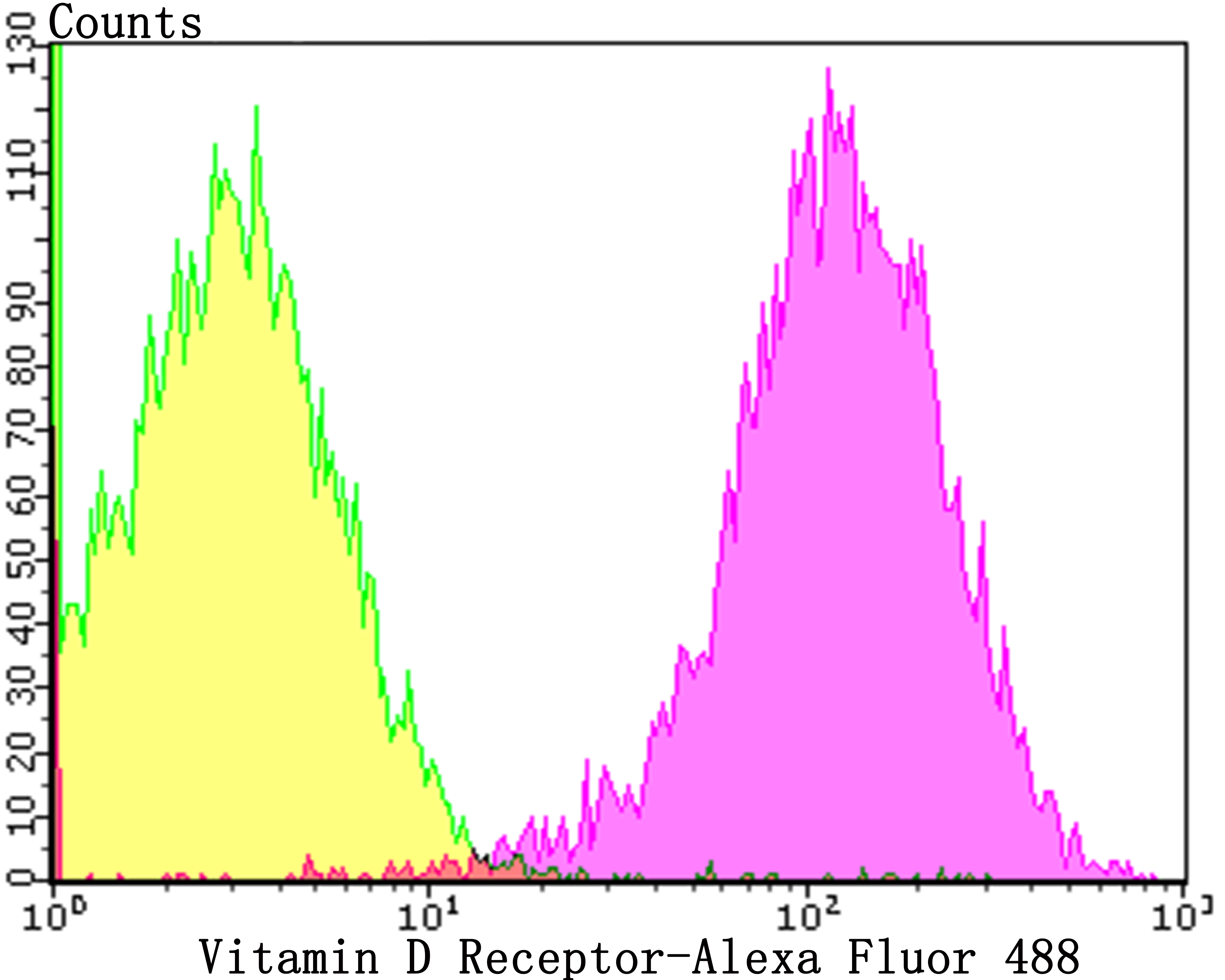 Flow cytometric analysis of LOVO cells with Vitamin D Receptor antibody at 1/50 dilution (purple) compared with an unlabelled control (cells without incubation with primary antibody; yellow). Alexa Fluor 488-conjugated goat anti-rabbit IgG was used as the secondary antibody.