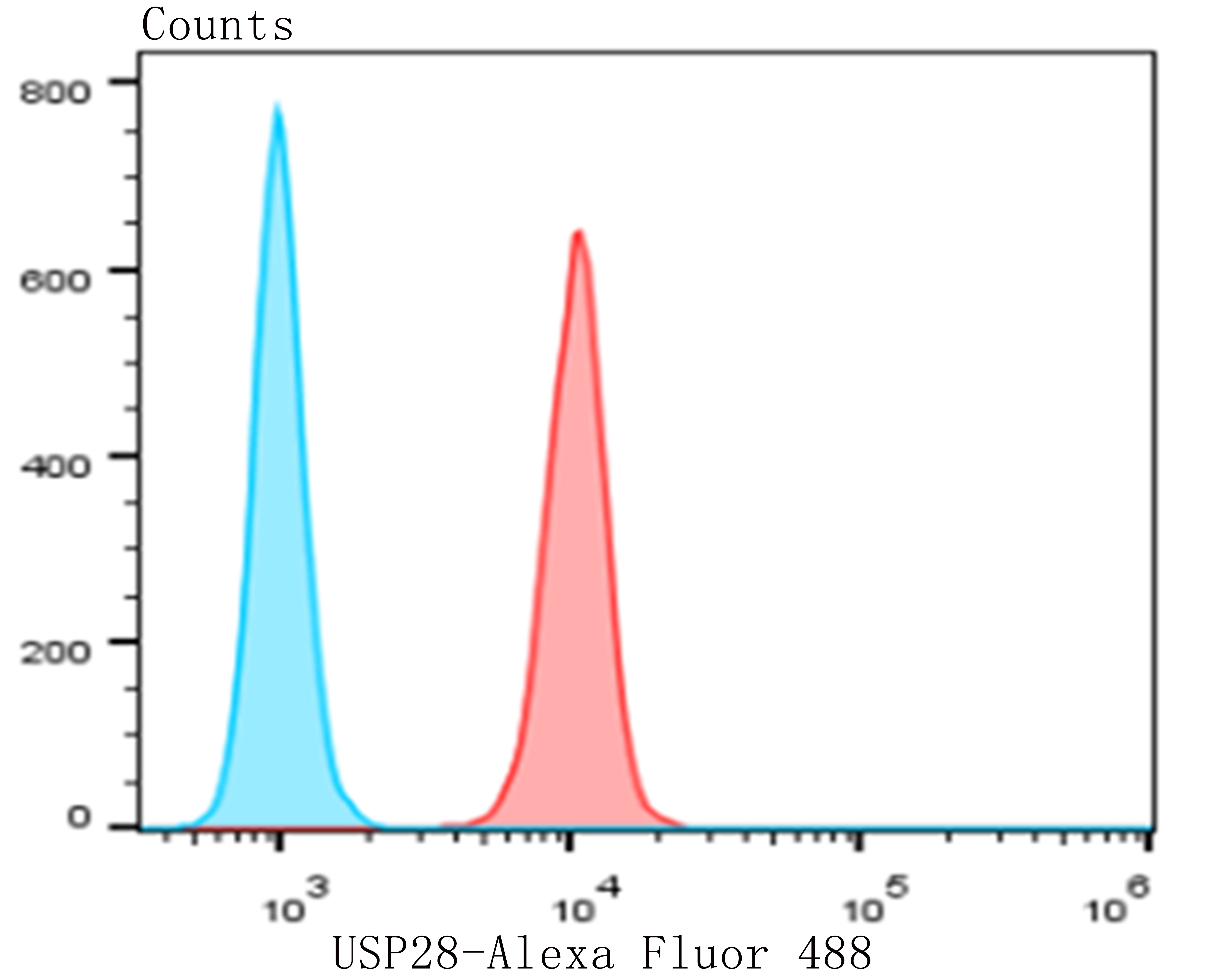 Flow cytometric analysis of MG-63 cells with USP28 antibody at 1/50 dilution (red) compared with an unlabelled control (cells without incubation with primary antibody; blue). Alexa Fluor 488-conjugated goat anti-rabbit IgG was used as the secondary antibody.