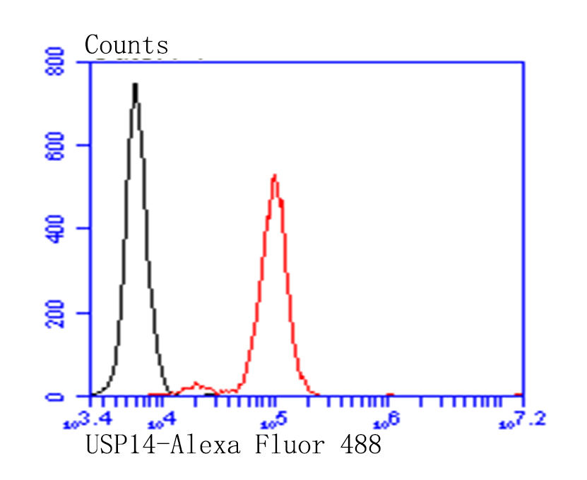 Flow cytometric analysis of SiHa cells with USP14 antibody at 1/100 dilution (red) compared with an unlabelled control (cells without incubation with primary antibody;black). Alexa Fluor 488-conjugated goat anti-rabbit IgG was used as the secondary antibody.